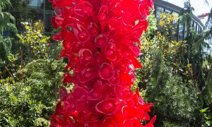 Chihuly Red
